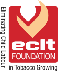 ECLT Foundation Project Web-Based Monitoring and Evaluation System